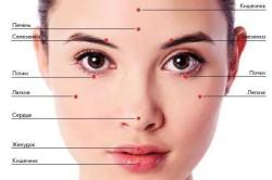 Проекции внутренних органов на лице
