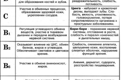 Список витаминов и их назначение